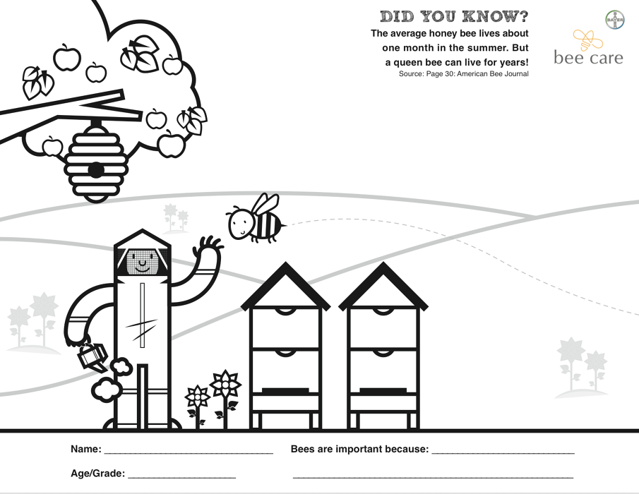 sac bee coloring contest pages - photo#5