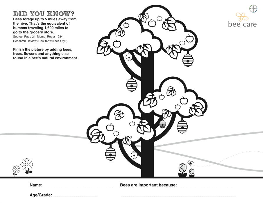 sac bee coloring contest pages - photo#7